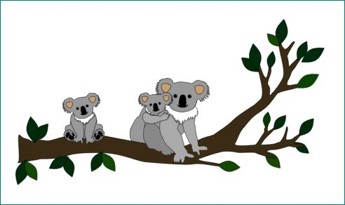 Koala behangtak babykamer koalabeer